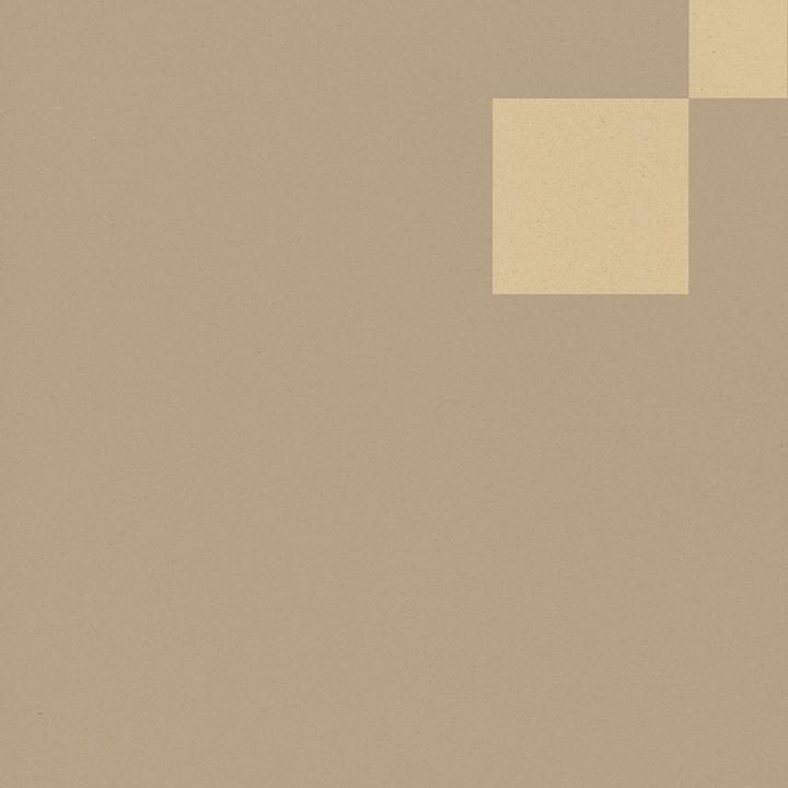 Carreau en grès SF TG 8207 P a, Ornement, S