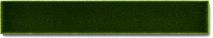Carreau de mur lisses émaillés F 10.32 Ri, Tannengrün, baguette