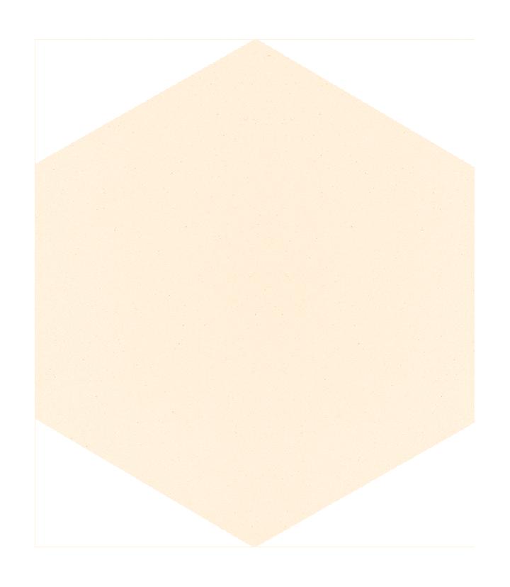 Carreau hexagonal SF 18.1