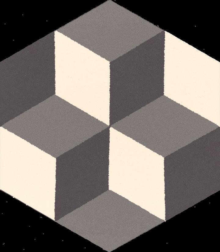 Carreau hexagonal SF 306 E