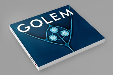 Dive into the world of Art Nouveau, Art Déco and Wilhelminian style tiles.  GOLEM catalogue